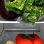 Axiomele alimentatiei moderne – sau cum construim palate în mlaştină şi nu înţelegem de ce se încăpăţânează să se prăbuşească